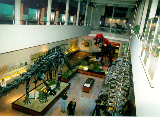 Original (1907) Dinosaur Hall of The Carnegie Museum  of Natural History